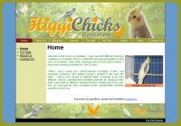 Main Pages - Home, About Us, News, Guest Book, Links, Contact Us. Create up to 100 pages.