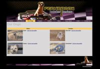 Profile List & Profile Page- Your breeding animals listed on one profile page each with a thumbnail photo and some text. Each profile can be clicked on to it's own page containing more text, photos, and pedigree.